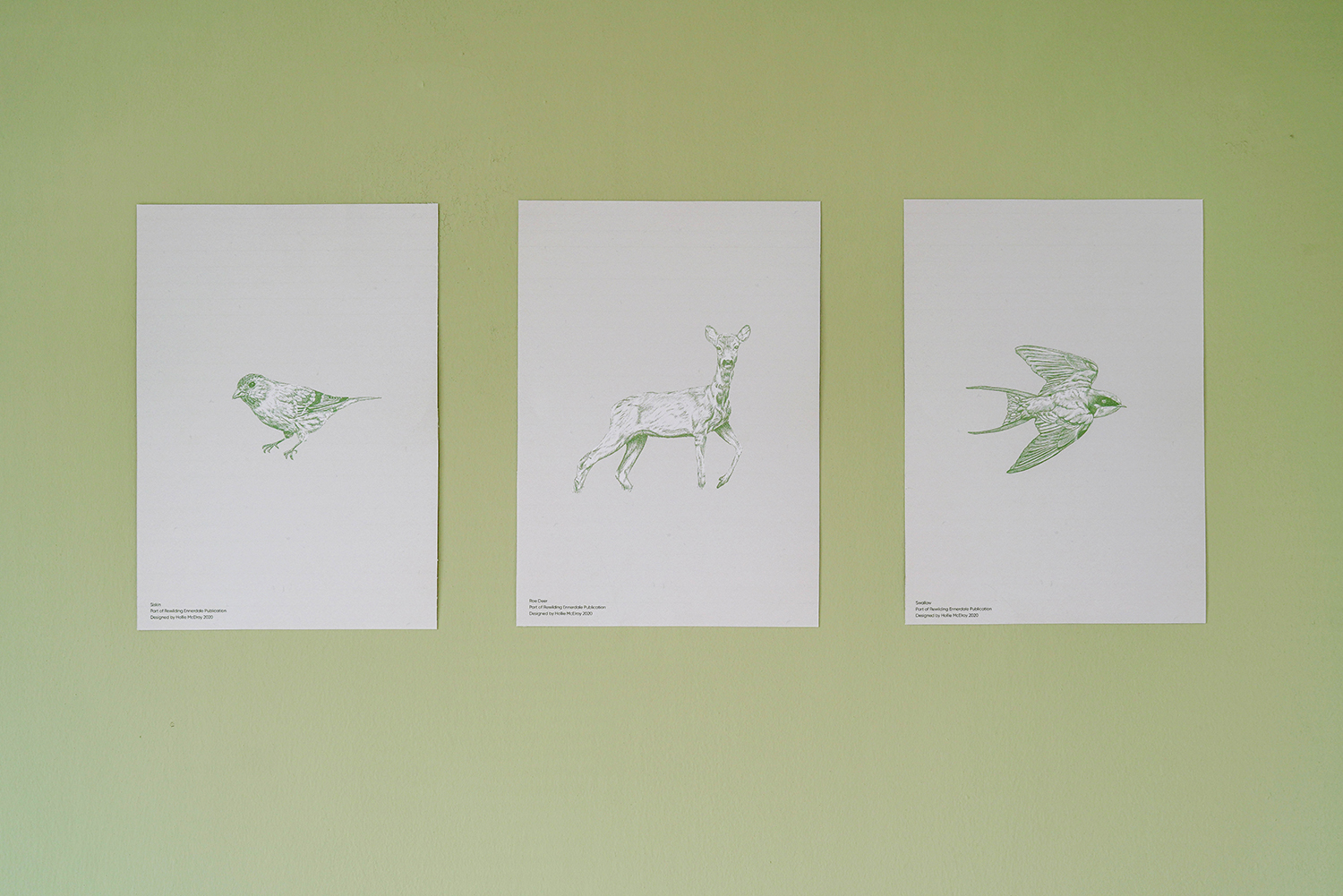 Illustrations of a tow different birds and a stag on a green background