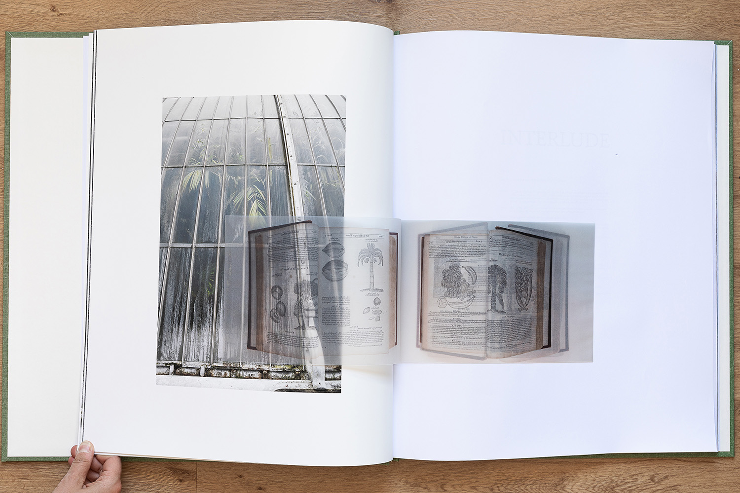 open book with transparent pages