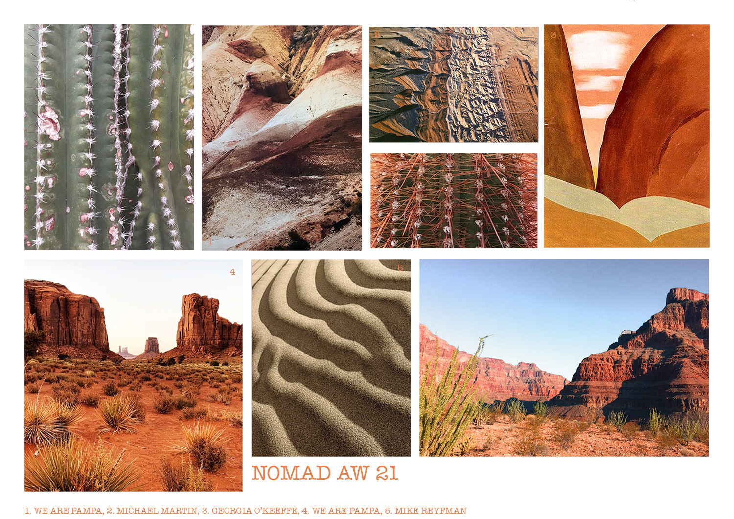 Desert Images Mood Board