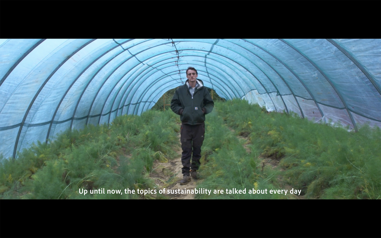 Man standing in a polytunnel