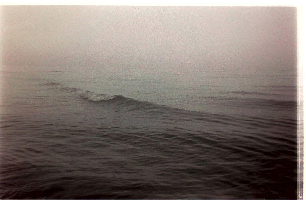 Photo of a wave
